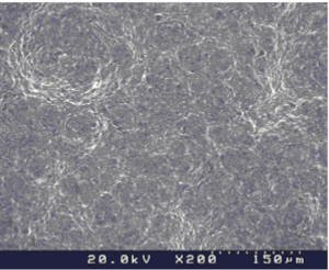SiC微細粒径1