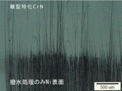 CrN コーティング耐久性テスト